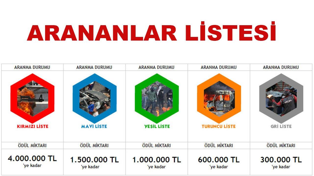Terör örgütü PKK'da çözülme devam ediyor: Gri listedeki terörist teslim oldu