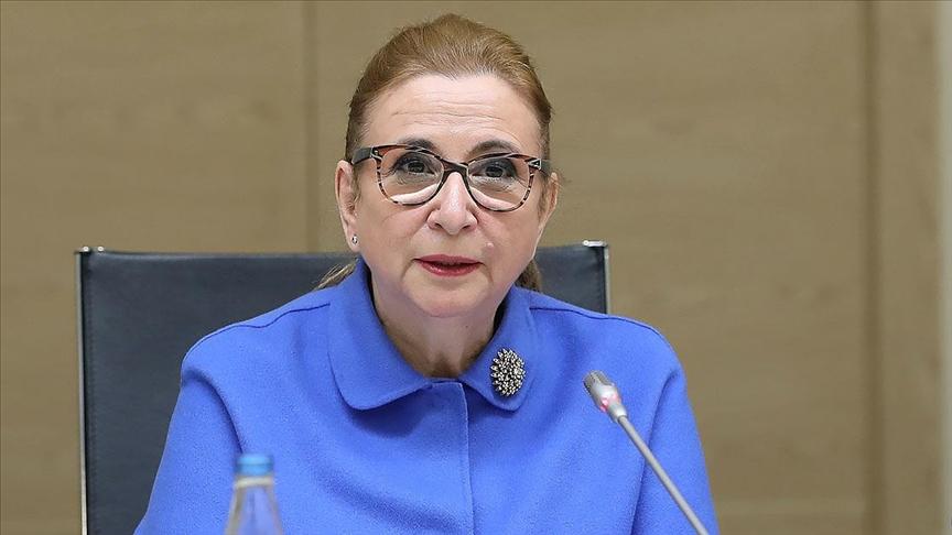 Ticaret Bakanı Pekcan: Türkiye ile Azerbaycan'a Serbest Ticaret Anlaşması yakışır