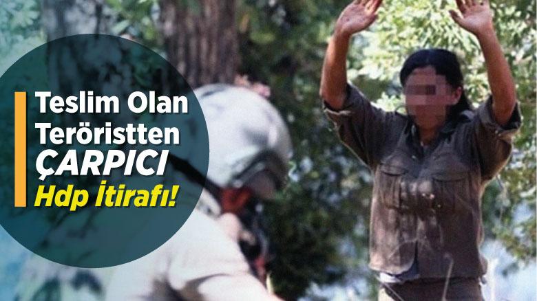 Teslim olan teröristten çarpıcı HDP itirafı!