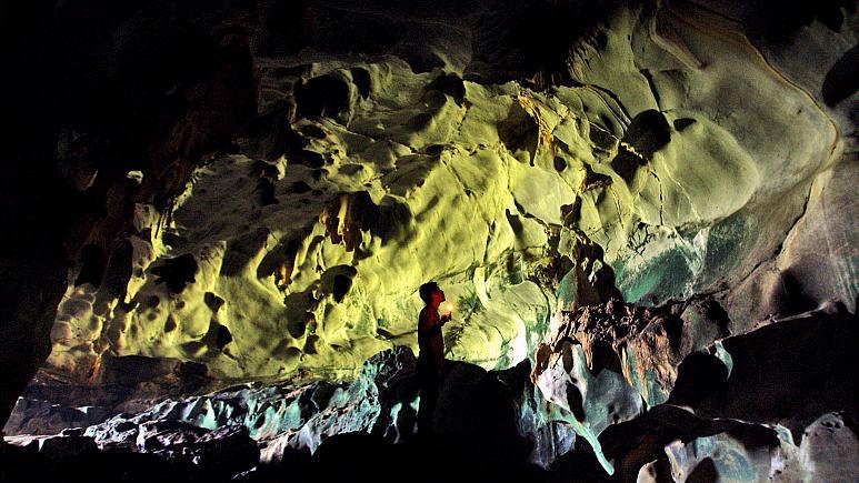 Endonezya'da bir mağarada 45 bin 500 yıl öncesine ait dünyanın bilinen en eski hayvan resmi bulundu